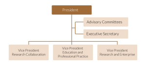 Board Of Director Structure